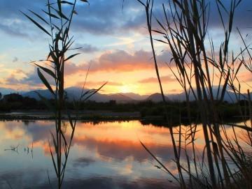 Vive la paz y la calma del Puerto Pollensa