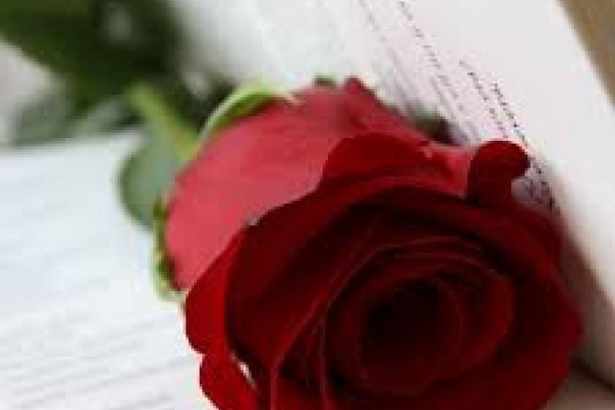 Sant Jordi, day of books and roses